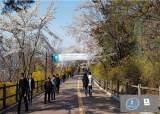 황금연휴 '방역 고삐'…서울시, 공원 어린이날 행사 모두 취소