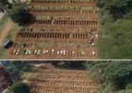 코로나19 사망자 1만명 넘어선 브라질, 신설 묘지가 한달만에 가득차