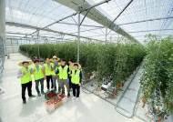 신재생 에너지 전문 태성그룹 '스마트팜'으로 농업분야 새바람
