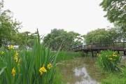 [나갈까말까]중부 흐림, 남부 맑음… 일요일 낮 최고 29도