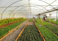 [더오래]유기농은 비싸도 잘 팔려! 그건 아니죠