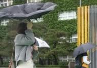 남부 오후까지 봄비…비 그치면 초여름 날씨