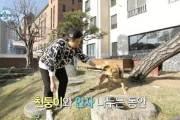 """박세리 '반려견 목줄 풀어달라' 지적에 """"사고날까봐 조심하는 것"""""""