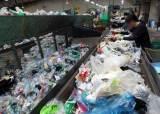 환경오염 주범 페트병…<!HS>식물<!HE>성 <!HS>플랑크톤<!HE>으로 분해 해법 찾았다