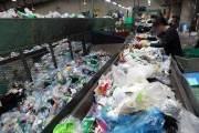 환경오염 주범 페트병…식물성 플랑크톤으로 분해 해법 찾았다