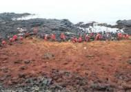 '버뮤다 삼각지대'에도 있다…제주에 밀려온 누런색 해조류