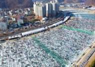 """동물학대 오명 벗은 산천어 축제···동물보호단체는 """"계속 반대"""""""