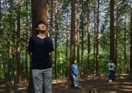 '지긋지긋 코로나' 치유 대세···'숲·숨·쉼' 웰니스 관광지 어디?