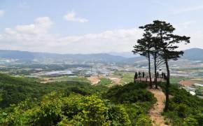 한국전쟁 70년, 그날의 격전지 펀치볼 둘레길을 걷다