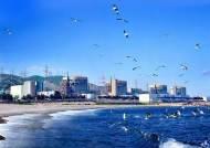 조기폐쇄 의혹에 핵연료 보관까지…바람 잘 날 없는 월성원전