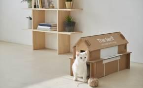 TV 포장재로 고양이집 만들고, 새벽 배송 아이스팩은 화분 영양제로