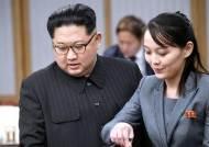 2주간 딱 한번 입장 낸 靑, 김정은 '군사행동 보류'에도 침묵