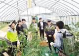 [국민의 기업] 실직·폐업 도시민을 위한 '농업 일자리 연계 <!HS>귀농<!HE>교육 프로그램'운영
