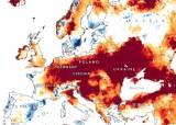 '500년간 최악의 가뭄'···지하수까지 마른 유럽은 목 마르다