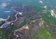 산림 123㏊ 잿더미…고성 산불 원인은 부실시공 화목보일러