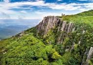 [힐링&맛의 고장 남도] 무등산, 월봉서원으로…문화와 역사·자연 즐기는 시티투어 버스 운행