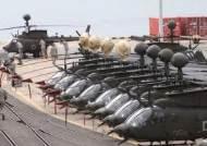 미군 헬기, 엔진 고장으로 서울 이촌 한강공원 비상착륙