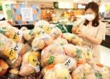 매일 먹는 양파, 일본 종자였다···한국 종자로 바꾸니 가격 뚝