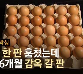 계란 한판 훔쳤다 징역 1년6월···배 몹시 고팠던 40년의 비극