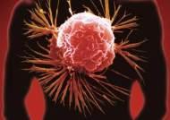 암세포만 끝까지 추적해 잡아 먹는 항암 면역치료법 나왔다