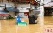 하늘 뚫리고 땅도 흔들린다···메뚜기떼까지 덮친 '시진핑 경제'