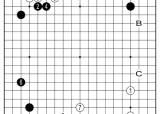 [삼성화재배 AI와 함께하는 <!HS>바둑<!HE> 해설] AI와 삼삼의 복잡한 관계