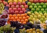 [더오래]작년 적자 사과농사, 올해 흑자 바라보는 비결