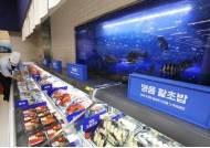 """[포토클립] """"여름 생선회 걱정 그만"""" 이마트, 식품 안전성 강화"""