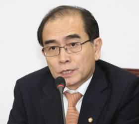 """태영호 """"北 <!HS>개성공단<!HE> 내 한국자산 폭파시 10년 징역형"""" 발의"""
