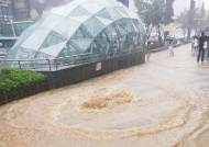 물폭탄에 아수라장된 강남···도림천선 급류 휩쓸린 80대 사망