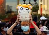 """태국 민주화시위 상징 된 '햄토리'...""""해리포터 집회도 연다"""""""