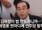 """[영상]""""김여정 지시로 <!HS>법<!HE> 만드나"""" 태영호 한마디에 설전 오간 여야"""