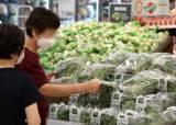 """""""배추·마늘·양파 가격 문제없다""""…농식품부, 총력대응"""