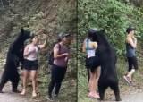 산책길 인생샷도 선물해줬는데…그 유명 '셀카 곰'의 비극