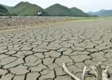 1년 내린 비, 28%만 활용…한번 쓴 물 걸러 화장실에 재활용을
