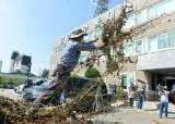 용담댐 방류 피해 주민, 썩은 복숭아·고추 던지며 집단 항의