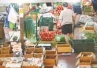 [사진] 애호박 148%, 상추 75% 채소값 무섭게 올랐다