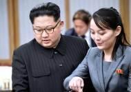 "CNN ""北 김여정 권한 두고 이인영-정경두 이견…이례적"""