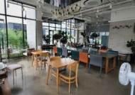 2.5단계 거리두기 희비···카페 '패닉', 편의점 '특수 기대'