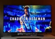 'MTV VMA'도 '블랙팬서' 채드윅 보스만 추모