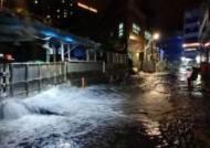 태풍 마이삭 할퀸 경남, 고압선 끊어져 2만여 가구 정전…강풍피해 속출