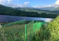 숲 파헤쳐 태양광 발전…20년 지나도 '환경적자' 못 메워