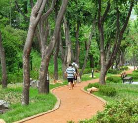 서울 강남 '맨발로 걷는 황톳길'…양재천로의 변신