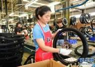 [CMG중국통신]8월 중국 무역액 전년 동기 대비 6% 성장