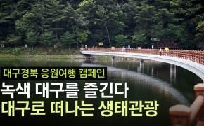 우거진 숲, 풍성한 강의 고장···대구로 떠나는 생태관광