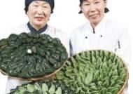 [남도의 맛&멋] 쫄깃한 반죽에 동부콩 소 듬뿍 담아 건강까지 생각한 '모싯잎 송편'