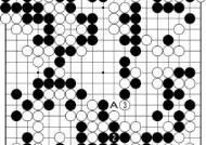 [삼성화재배 AI와 함께하는 바둑 해설] 중국 26위 탕웨이싱 우승