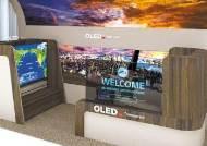 [힘내라! 대한민국 경제] 차별화된 OLED 제품 확대, 미래 성장동력으로 육성