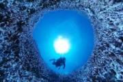 360도로 본 세계 최대 산호초의 '하얀 비명'[VR 영상]
