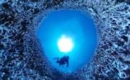 [VR]물고기도 얼씬 않는 그곳, 세계 최대 산호초의 '하얀 비명'